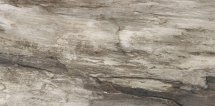 Emil Ceramica Petrified Tree Grey Bark Nat 45x90