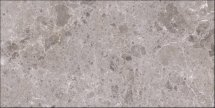 Grespania Artic Gris Natural 60x120