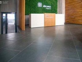 Idalgo Granite Stone Cement 5